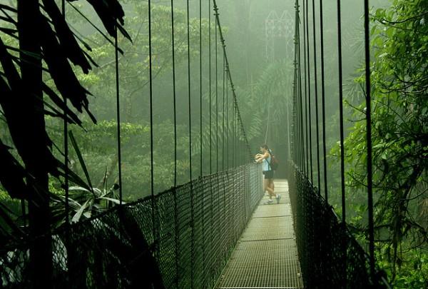 Джунгли Мексики экскурсия
