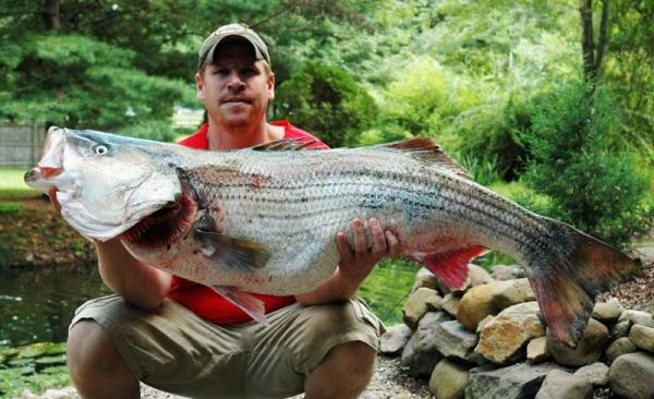 Рыбалка в Мексике4