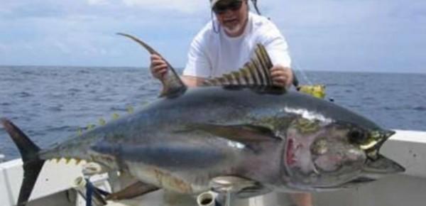 Мексика рыбалка